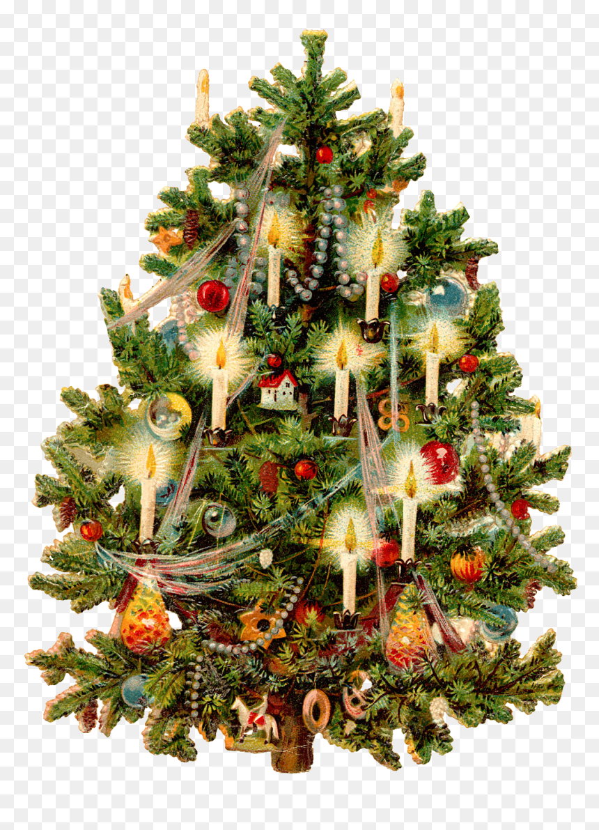 Vintage Christmas Tree Art Hd Png Download Vhv