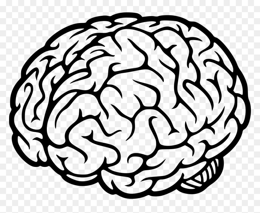 Brain Icon Transparent Background Hd Png Download Vhv