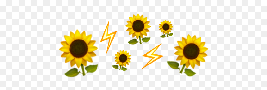 emoji crown iphone yellow flower aesthetic flower emoji crown transparent hd png download vhv emoji crown iphone yellow flower