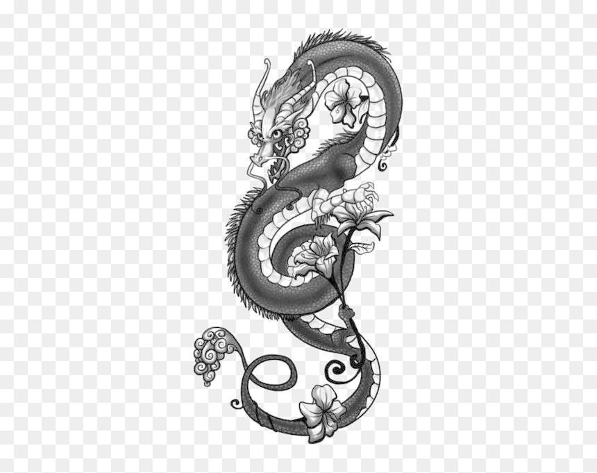 tattoo japanese dragon drawing chinese dragon transparent dragon tattoo png png download vhv tattoo japanese dragon drawing chinese