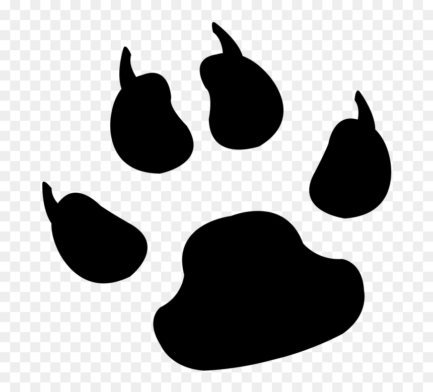 Lion Paw Png Tiger Paw Print Png Transparent Png Vhv Look at links below to get more options for getting and using clip art. lion paw png tiger paw print png