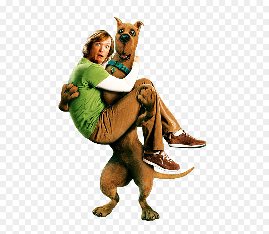 Scooby Doo Filme Png Scooby Doo 2 Shaggy And Scooby Transparent Png Vhv