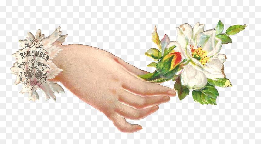 Flower In Hand Png Transparent Png Vhv Collection of namaste cliparts (30) transparent prayer hands png welcome hand flower in hand png transparent png vhv