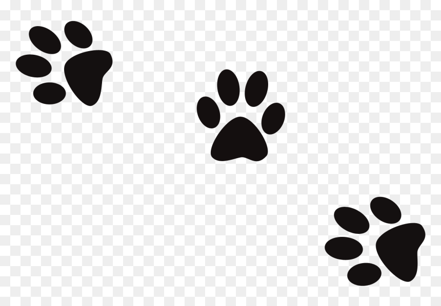 Dog Print Cat Footprint Banner Black And White Files Dog Foot Print Png Transparent Png Vhv 45 transparent png of cat paw print. dog print cat footprint banner black