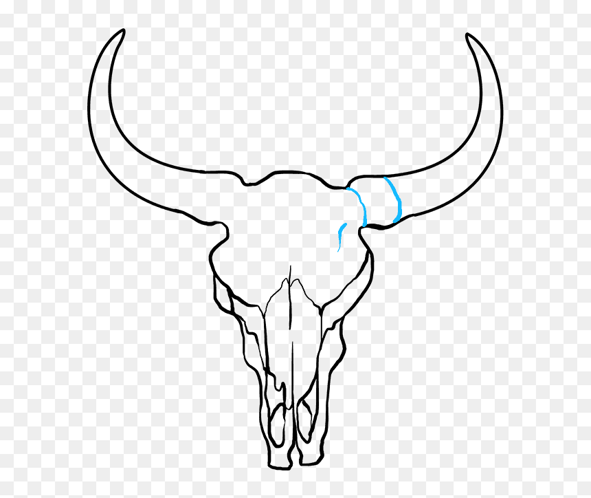 How To Draw A - Cow Skull Drawing Easy, HD Png Download - vhv