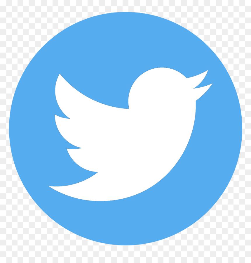 Transparent Background Twitter Logo Hd Png Download Vhv