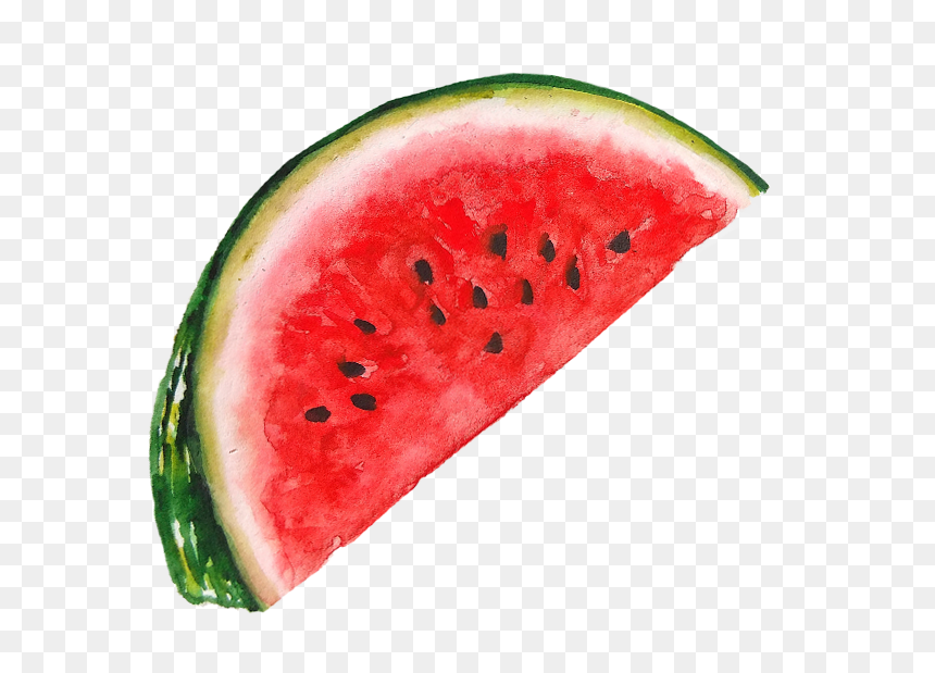 Watermelon With Lots Of Seeds Hd Png Download Vhv