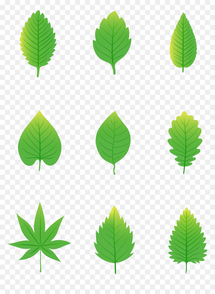 Simplicity Cartoon Green Leaves Elements Png And Vector Green Leaves Cartoon Transparent Png Vhv