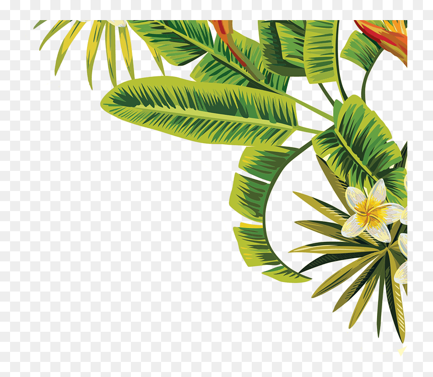 Tropical Leaves Png Transparent Png Download Vhv More icons from this author. tropical leaves png transparent png