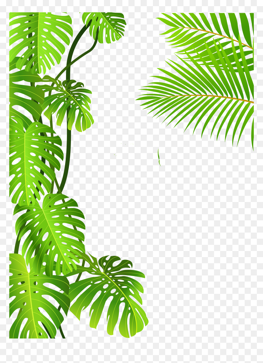 Tropical Rainforest Jungle Png Transparent Png Vhv Use these free jungle leaves png #66058 for your personal projects or designs. tropical rainforest jungle png