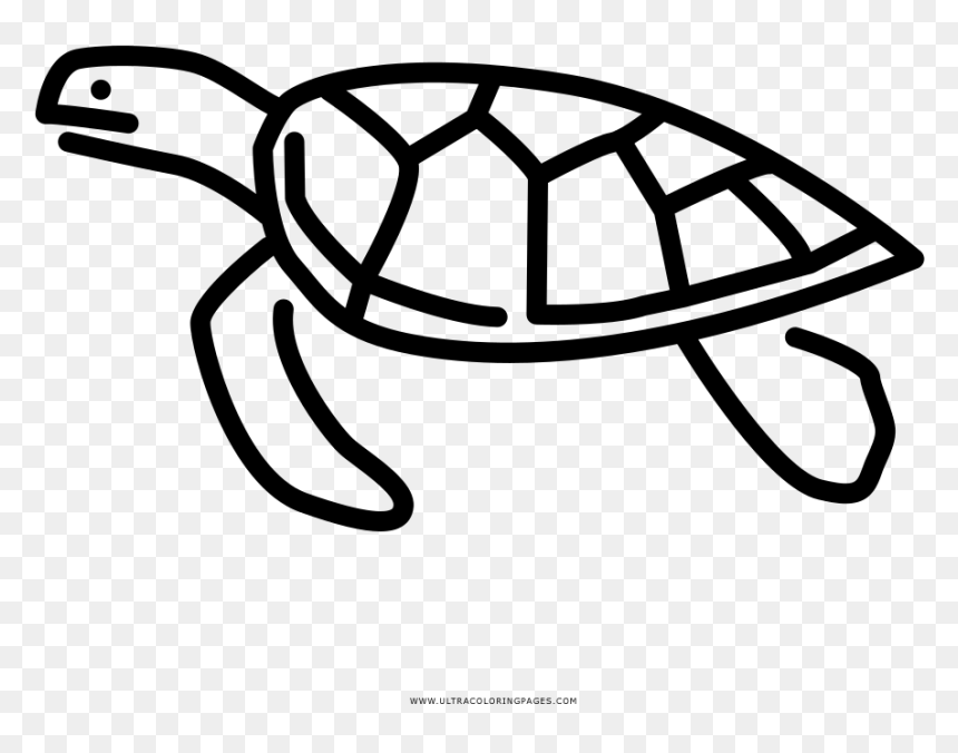 Coloring pages for adults. Sea Turtle. Adult coloring pages ... | 676x860