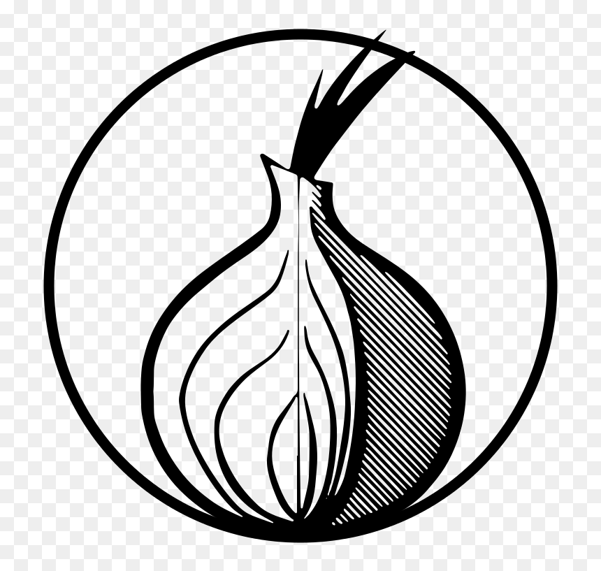 Cartoon onion.