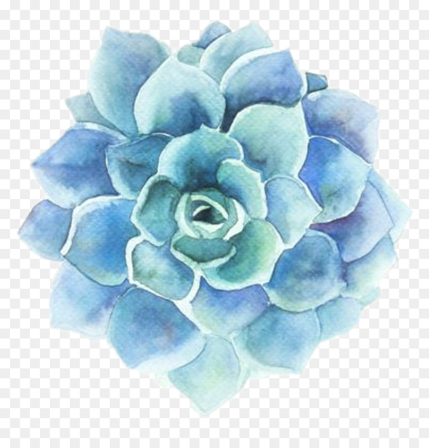 Blue Aesthetic Stickers Flower Hd Png Download Vhv