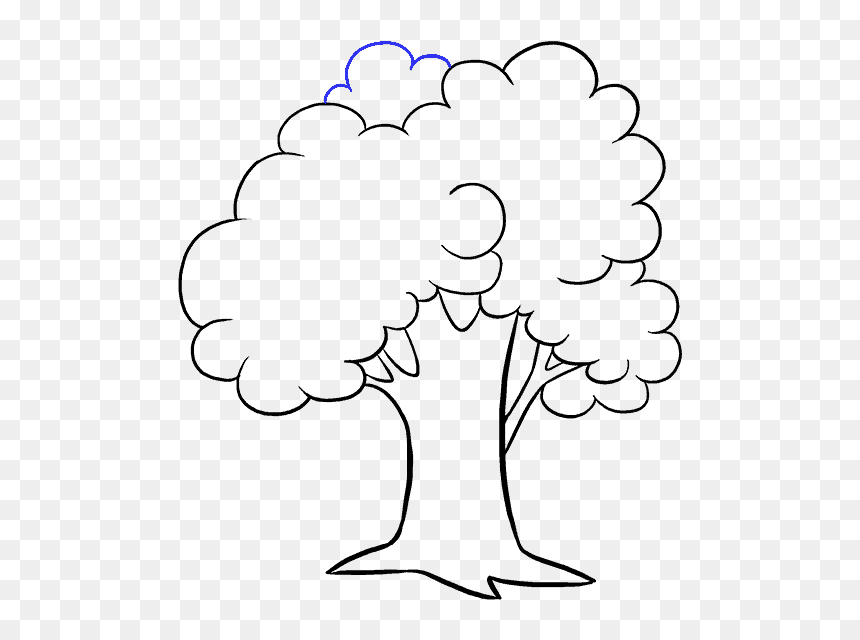How To Draw A Cartoon Tree Easy Step Drawing Picture Of Tree Hd Png Download Vhv