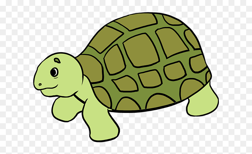 How To Draw Sea Turtle Easy Step By Step Easy Turtle Drawing Hd