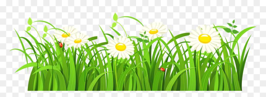 green grass vector png transparent png vhv green grass vector png transparent png