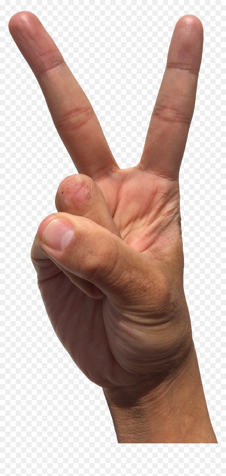 Transparent Peace Sign Fingers Hd Png Download Vhv Discover 114 free peace sign hand png images with transparent backgrounds. transparent peace sign fingers hd png