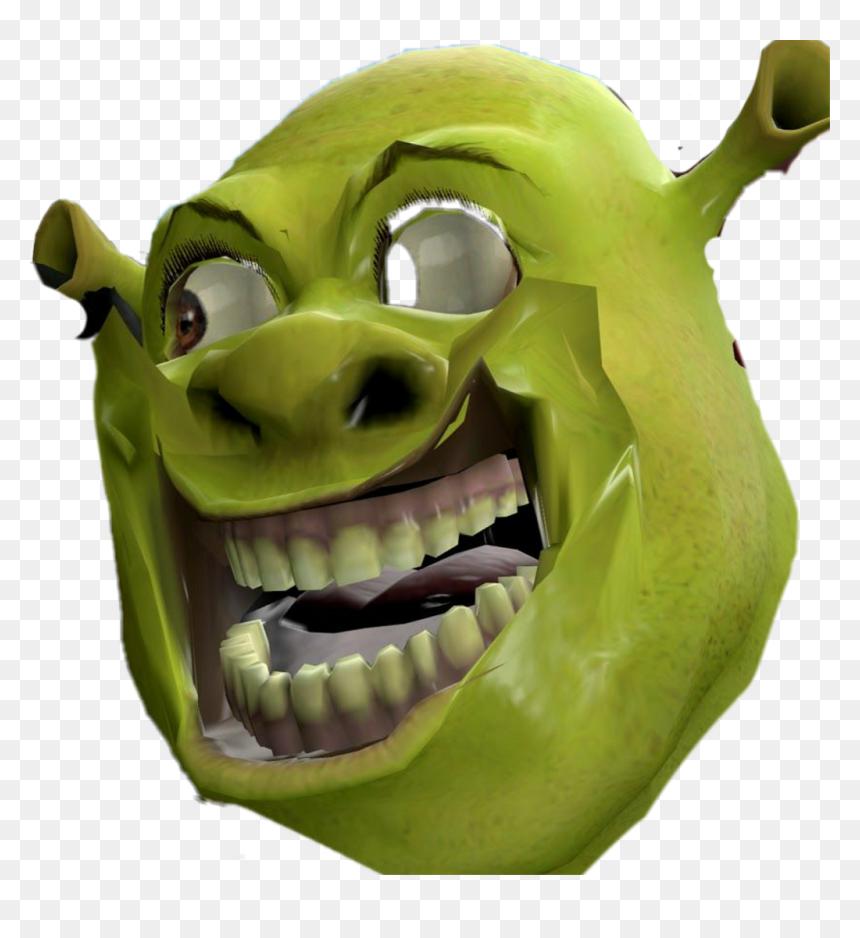 Dank Shrek Face Hd Png Download Vhv