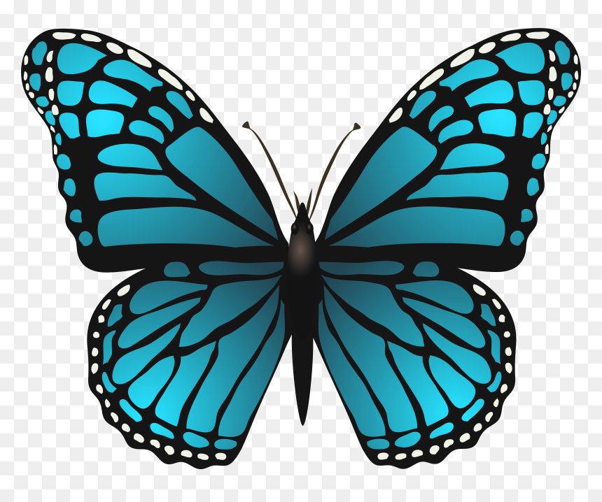 Butterfly Transparency and translucency, Butterflies Swarm File transparent  background PNG clipart | HiClipart