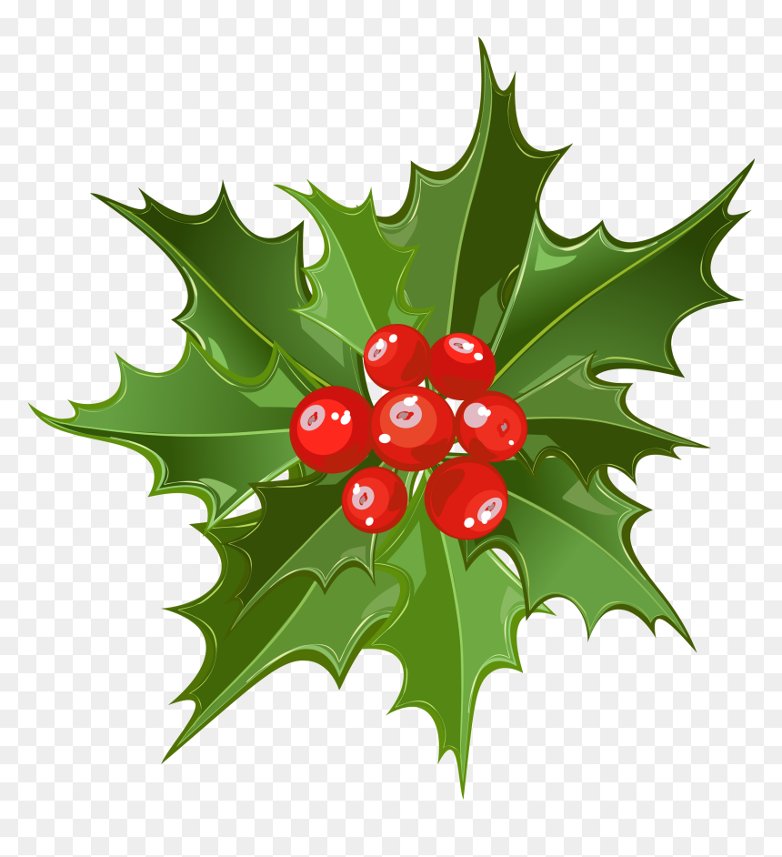 Christmas Mistletoe Clipart Png Png Download Mistletoe Hd Transparent Png Vhv Over 13,627 mistletoe pictures to choose from, with no signup needed. christmas mistletoe clipart png png