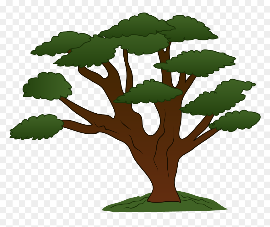 Tree With Branches Cartoon Hd Png Download Vhv Find & download free graphic resources for tree branch. branches cartoon hd png download