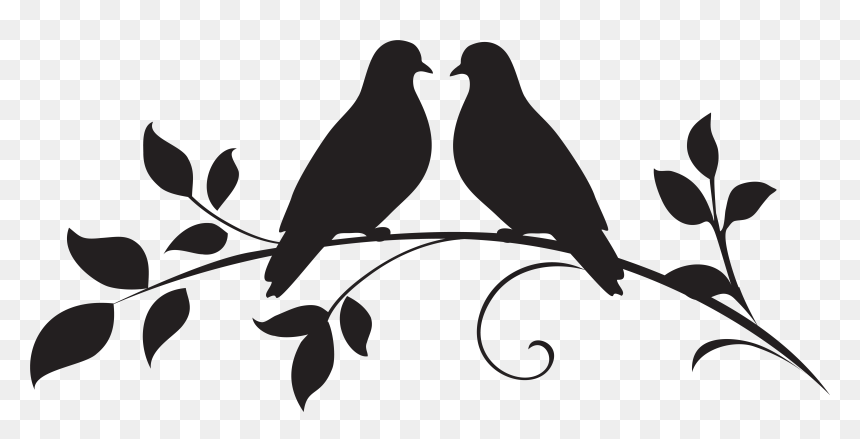 Love Birds On Branch Png Love Birds Clipart Black And White Transparent Png Vhv