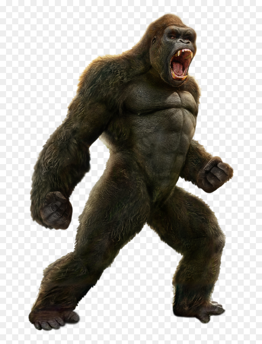The Death Battle Fanon Wiki King Kong Vs George Rampage Hd Png