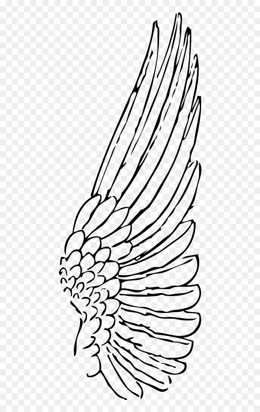 Drawing Angel Wings Side Hd Png Download Vhv