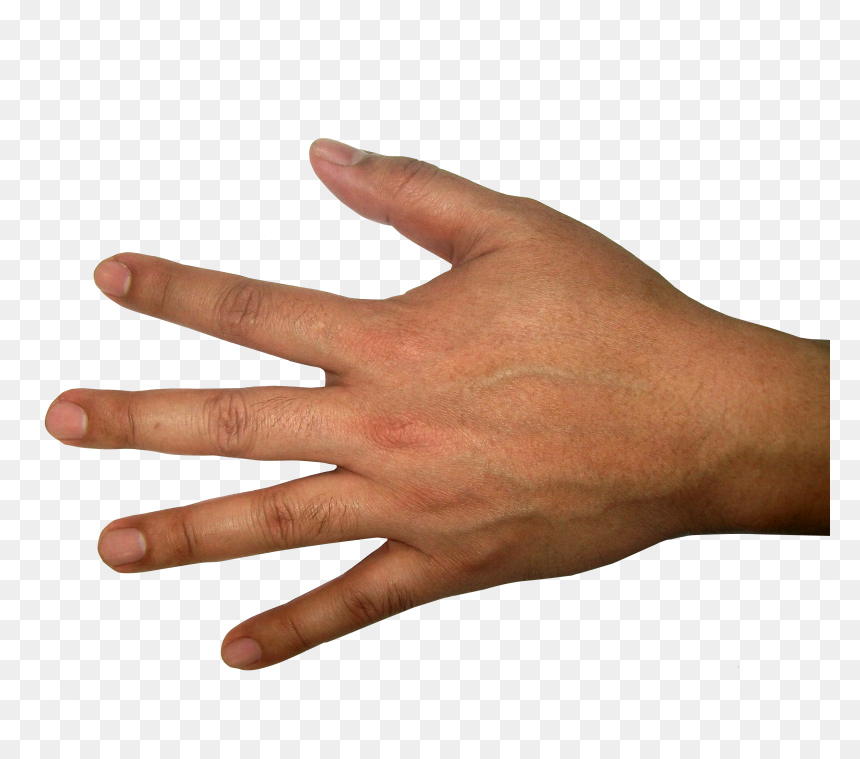 Hands Png Free Images Back Of Hand Transparent Background Png Download Vhv This cover has been designed using resources from flaticon.com. hands png free images back of hand