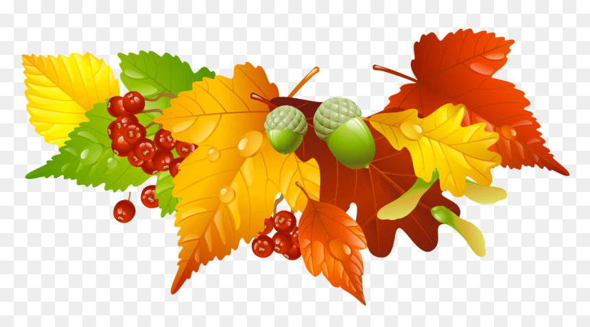 7 Places to Find Free Fall Leaves Clip Art Images