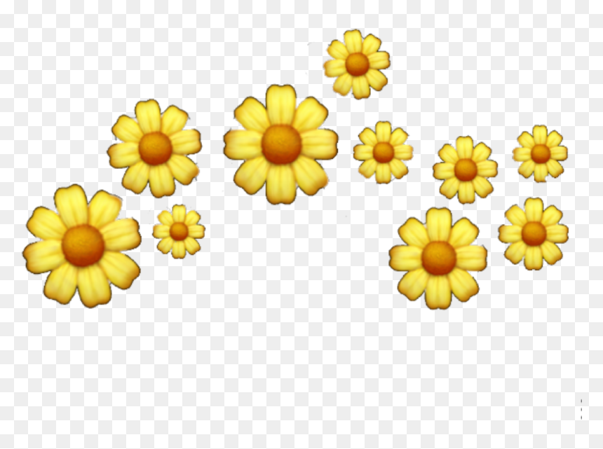 popular and trending flowers background tumblr stickers yellow aesthetic stickers png transparent png vhv yellow aesthetic stickers png