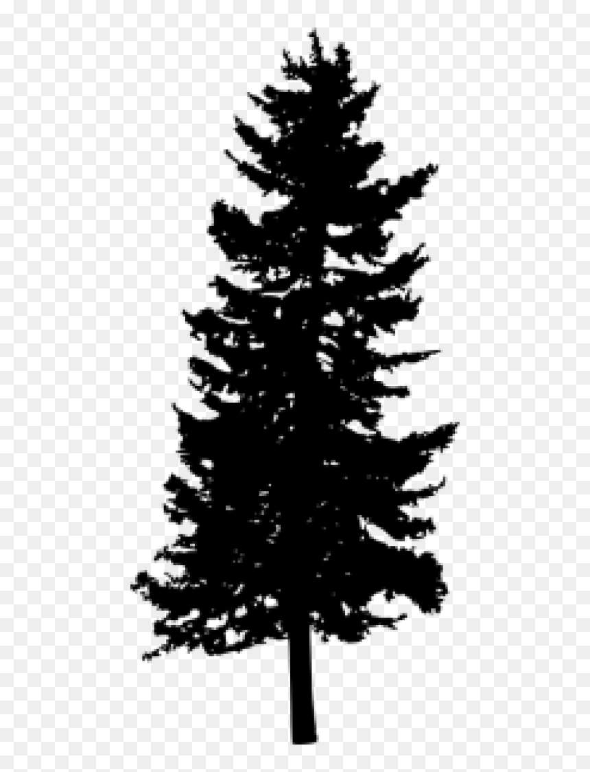 Free Png Pine Tree Silhouette Png Images Transparent Free Transparent Background Pine Tree Silhouette Png Download Vhv