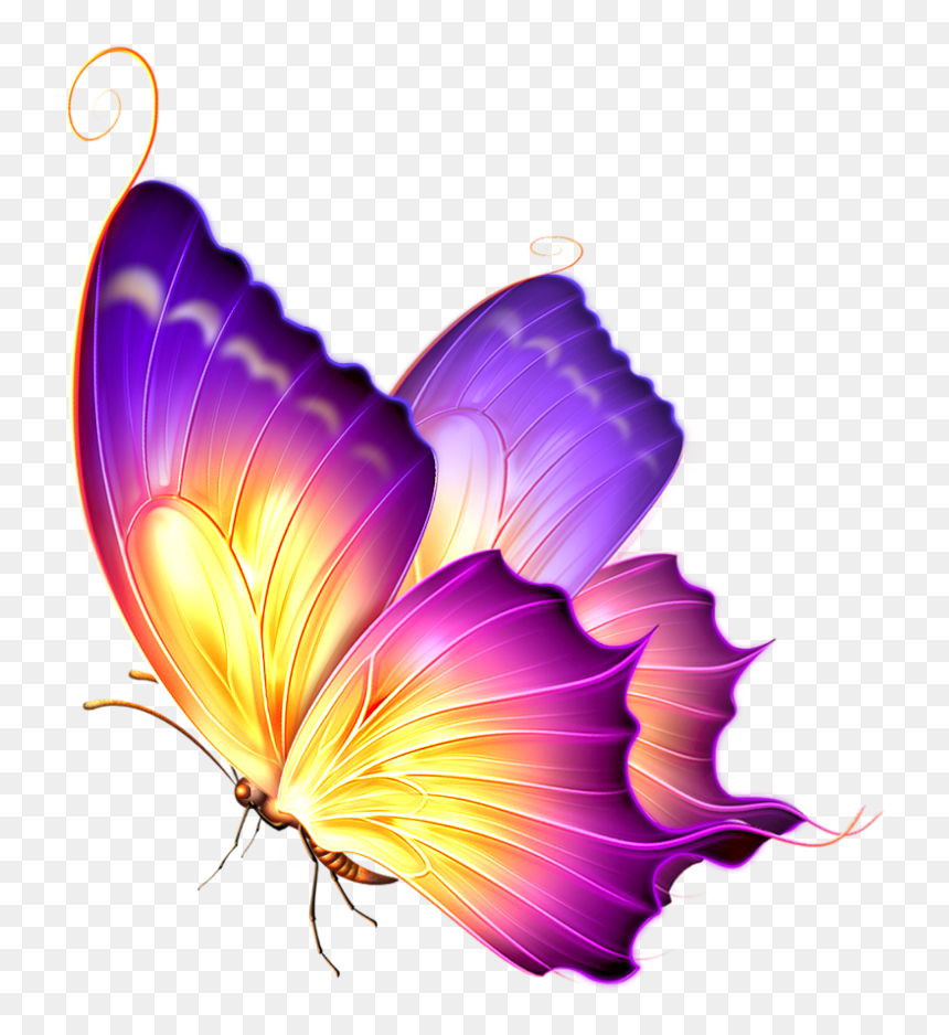 Purple Glow Png Glowing Butterfly Png For Picsart Transparent Png Vhv