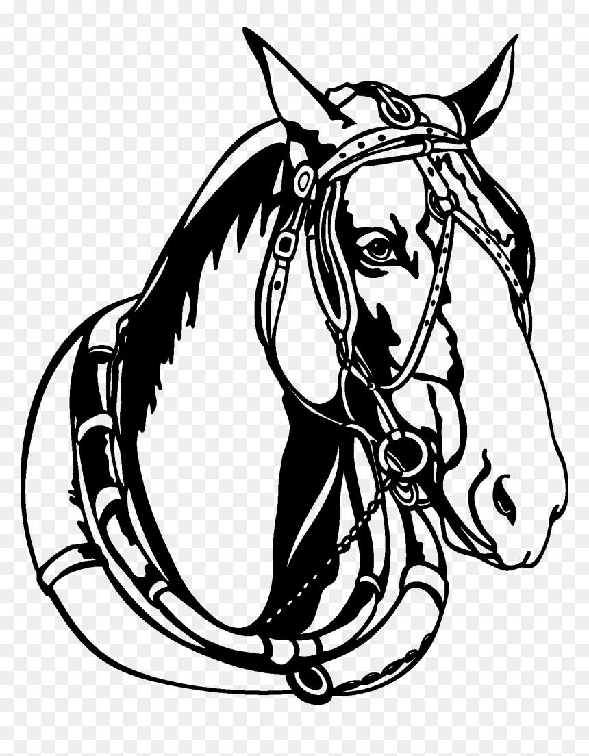 12 Horse Head Black And White Vectors Eps File Horse Vector Black And White Hd Png Download Vhv