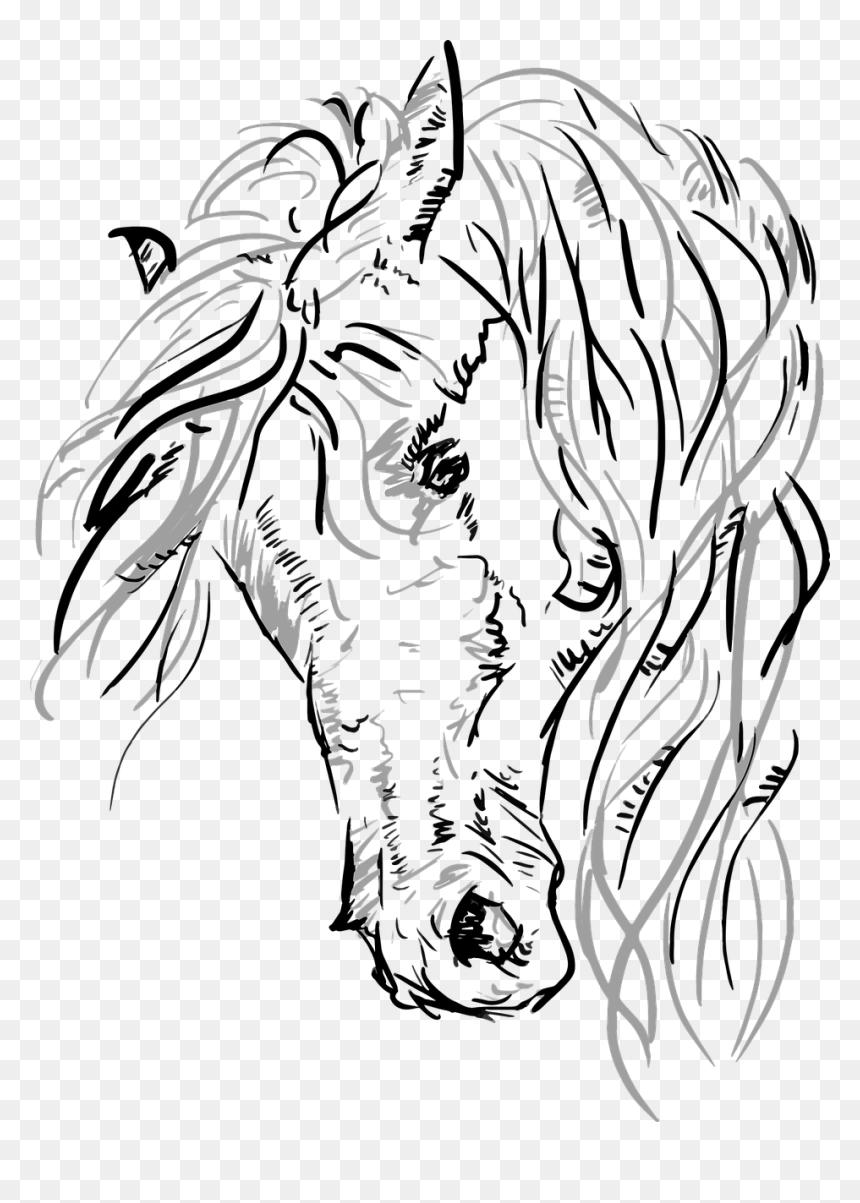 Horse Head Vector Png Transparent Png Vhv