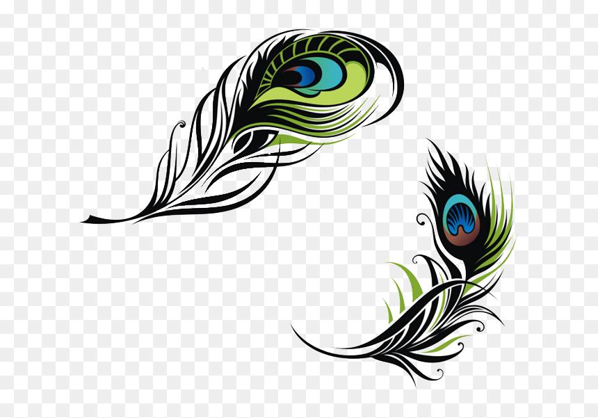 bird feather peafowl euclidean vector vector peacock feather png transparent png vhv bird feather peafowl euclidean vector