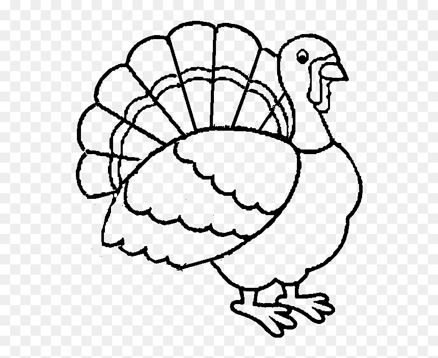 Best Turkey Printable Coloring Pages For Kids Boys - Turkey Coloring Pages  For Kids, HD Png Download - Vhv