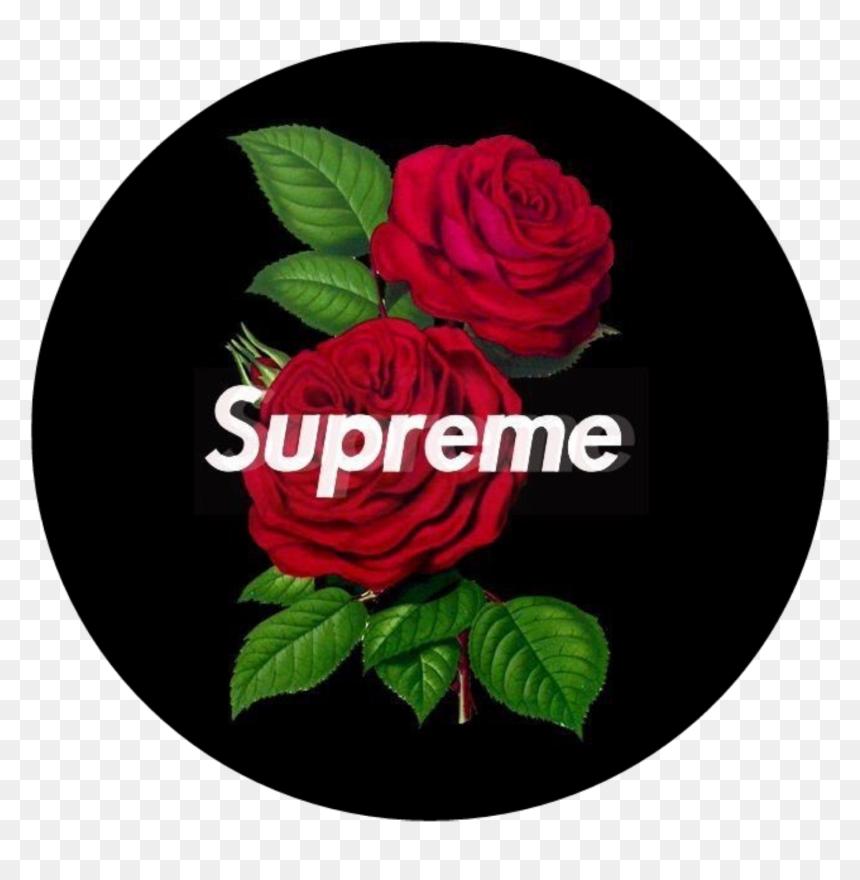 Circle Png Flower Supreme Red Rose Redrose Black Border Wallpaper Iphone 11 Transparent Png Vhv
