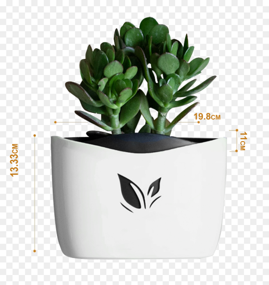 Nail Free Hanging Plant Pots White White Flower Pot Png Transparent Png Vhv