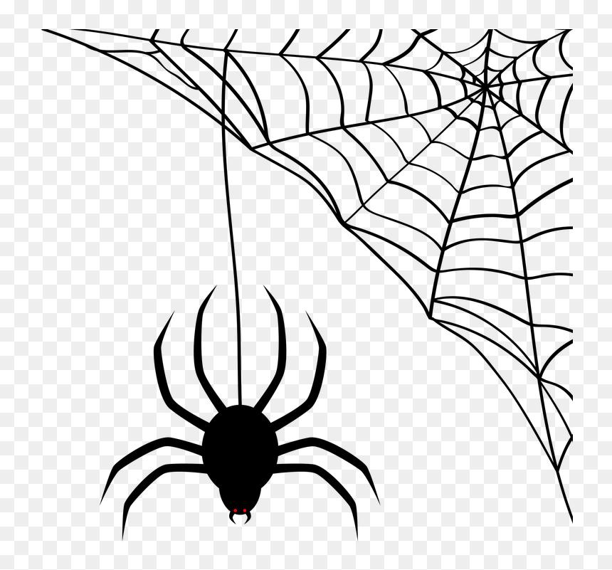 Cobweb Clip Art