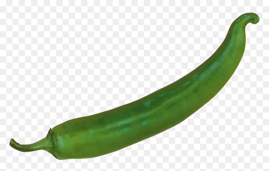 Green Chili Peppers Clip Art