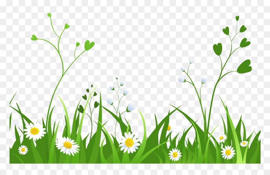Grass Png Hd Grass Background Clipart Transparent Png Vhv