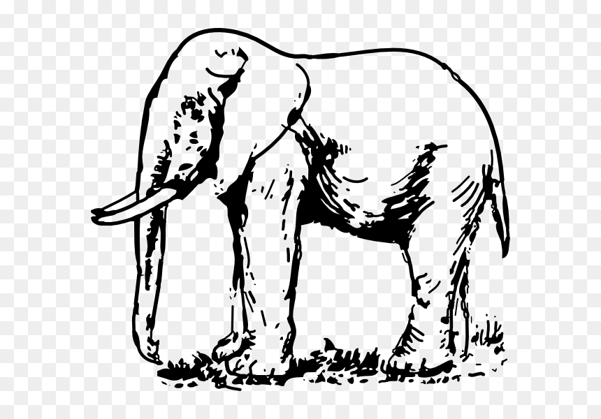 Elephant Drawing Png Drawing Pictures Of Animals Download Transparent Png Vhv Almost files can be used for commercial. elephant drawing png drawing pictures