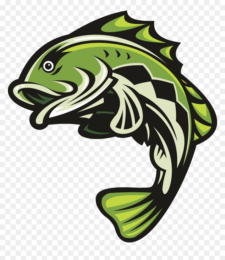 Largemouth Bass Cliparts Stock Vector And Royalty Free Largemouth   Fish  outline, Fish art, Fish clipart