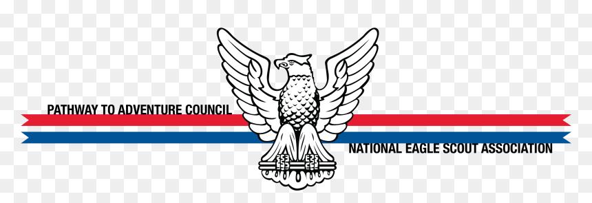 Medal clipart eagle scout, Medal eagle scout Transparent FREE for download  on WebStockReview 2020