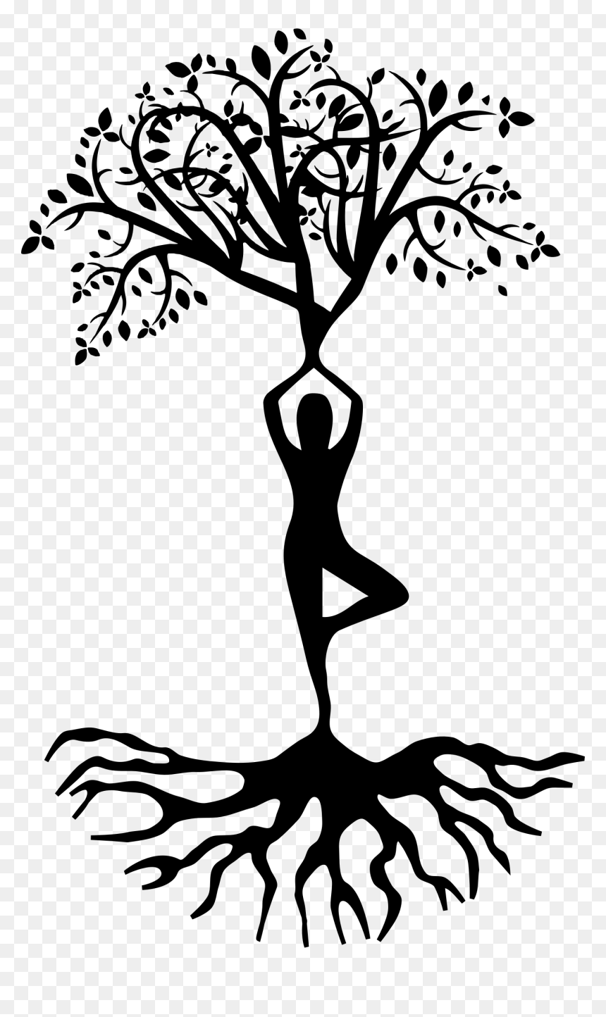 Tree With Roots Silhouette Png Clipart Yoga Tree Pose Transparent Png Vhv