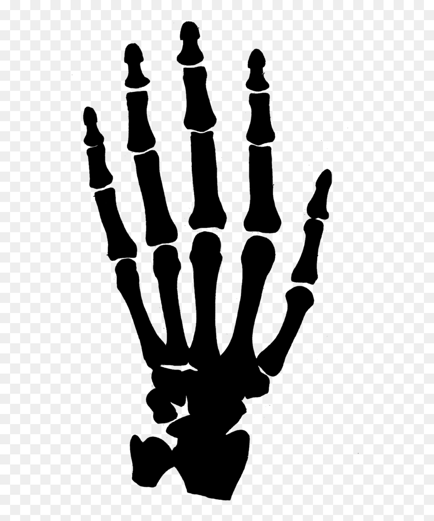 Hand Clipart Black And White Png Transparent Background Skeleton Hand Png Download Vhv Download for free in png, svg, pdf formats 👆. hand clipart black and white png