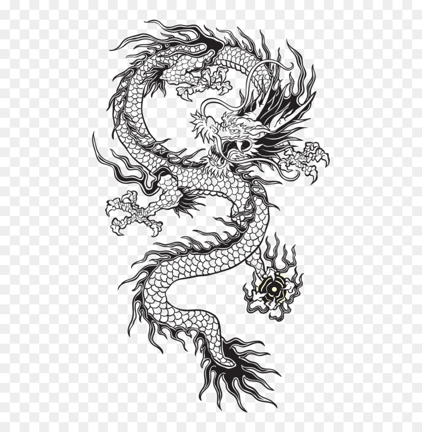 Transparent Chinese Dragon Tumblr Black And White Chinese Dragon Tattoo Transparent Hd Png Download Vhv