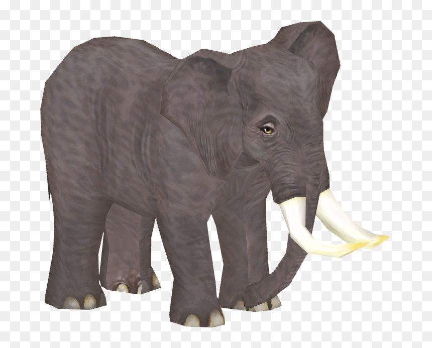 Indian Elephant Hd Png Download Vhv Baby elephant elephant vector elephant and the white rabbit indian elephant african elephant asian elephant elephant seal. vhv rs