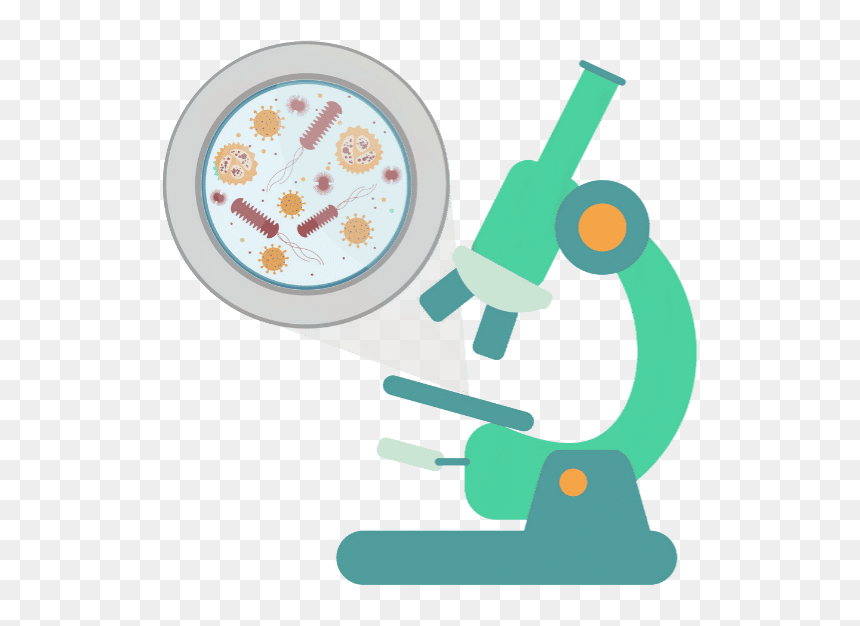 blood test with microscope blood under microscope cartoon hd png download vhv blood under microscope cartoon hd png
